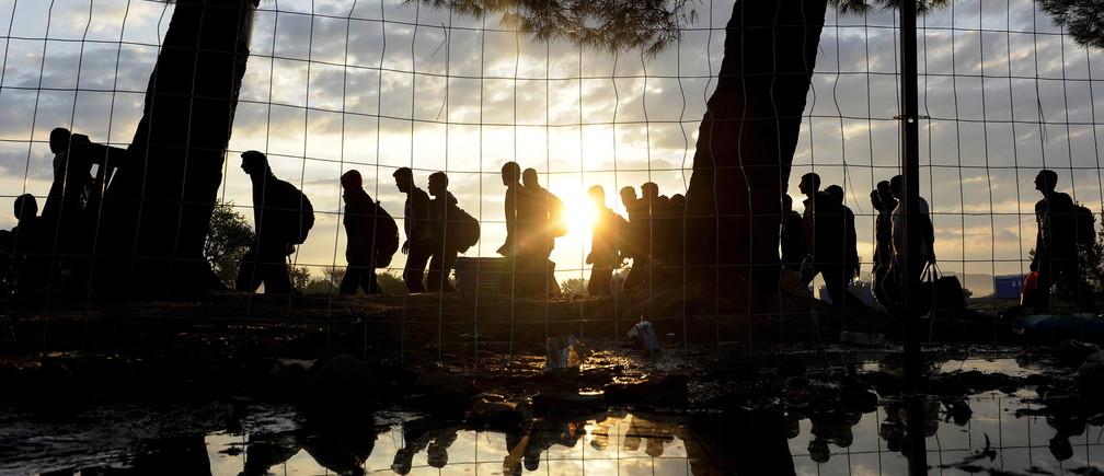 Syrian refugees walk towards Greece's border with Macedonia, near the Greek village of Idomeni, September 14, 2015.