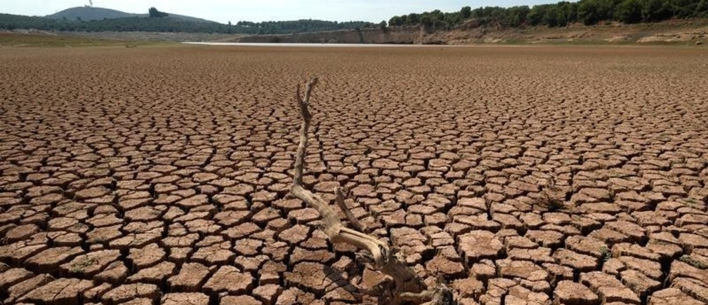 The remains of a dead tree are pictured at the almost empty Maria Cristina water reservoir  during a severe drought near Castellon, Spain, September 14, 2018.
