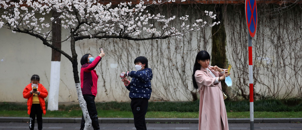 People wearing face masks use their phones under blooming cherry blossoms near Jiming Temple, as the country is hit by a novel coronavirus, in Nanjing, Jiangsu province Coronavirus china virus health healthcare who world health organization disease deaths pandemic epidemic worries concerns Health virus contagious contagion viruses diseases disease lab laboratory doctor health dr nurse medical medicine drugs vaccines vaccinations inoculations technology testing test medicinal biotechnology biotech biology chemistry physics microscope research influenza flu cold common cold bug risk symptomes respiratory china iran italy europe asia america south america north washing hands wash hands coughs sneezes spread spreading precaution precautions health warning covid 19 cov SARS 2019ncov wuhan sarscow wuhanpneumonia  pneumonia outbreak patients unhealthy fatality mortality elderly old elder age serious death deathly deadly