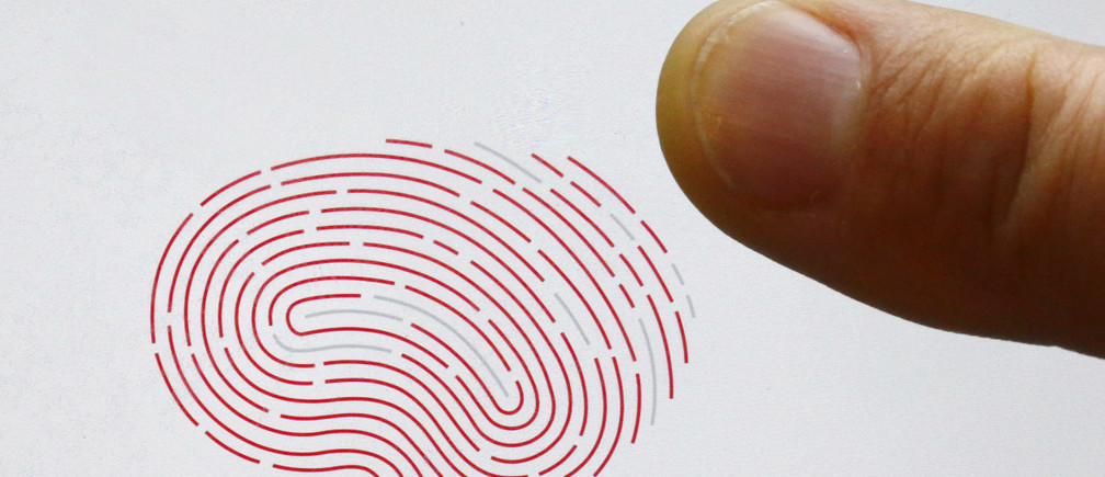 A person uses a sensor for biometric identification on a smartphone in Berlin, Germany October 16, 2015. On the verge of collapse a decade ago, Sweden's Fingerprint Cards (FPC) has emerged market leader in a booming industry set to supply billions of touch fingerprint sensors for smartphones, tablets and credit cards in the years ahead. After years in the wildnerness, plowing cash into product development, the main rival of U.S. Synaptics has seen demand soar in 2015, bagging deals from some of China's biggest smartphone makers and U.S. tech giant Google. REUTERS/Fabrizio Bensch  - LR1EBAG0VJL09