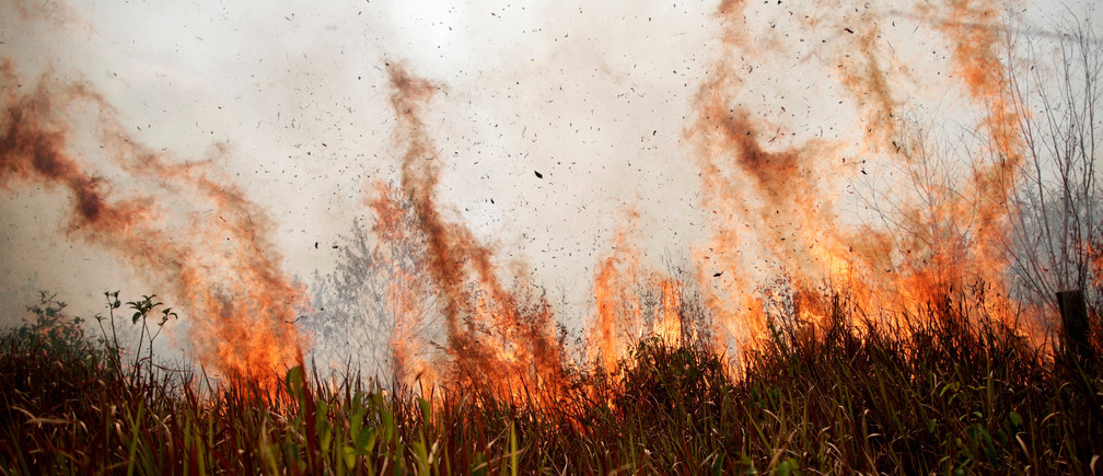 A tract of the Amazon jungle burns as it is cleared by loggers and farmers in Porto Velho, Brazil August 24, 2019. REUTERS/Ueslei Marcelino - RC138880AFC0