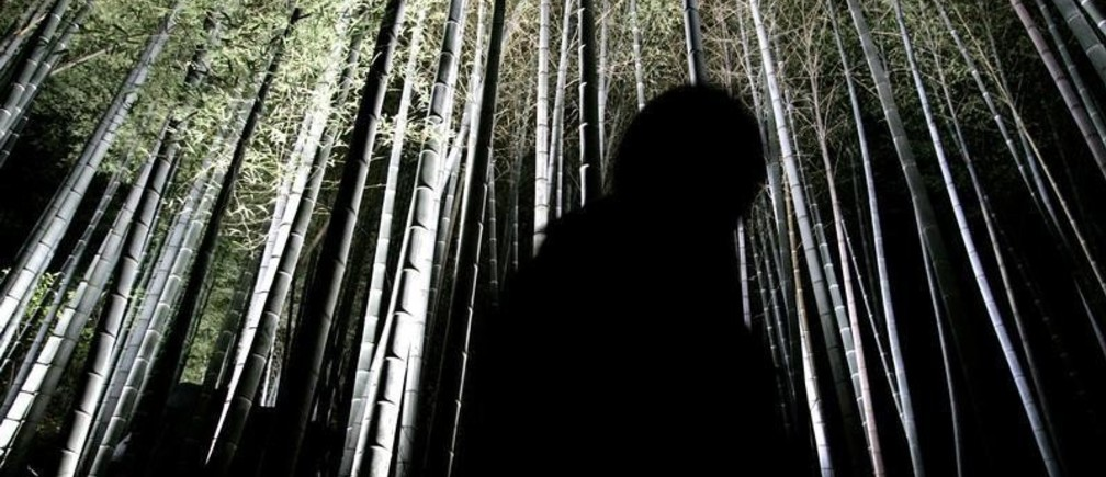 Visitors are silhouetted in front of an illuminated bamboo grove at Shorenin temple in the ancient capital of Kyoto, western Japan November 13, 2006.    REUTERS/Issei Kato (JAPAN)     Also see image: GF1DUZCZRAAA - GM1DTXXVHJAA