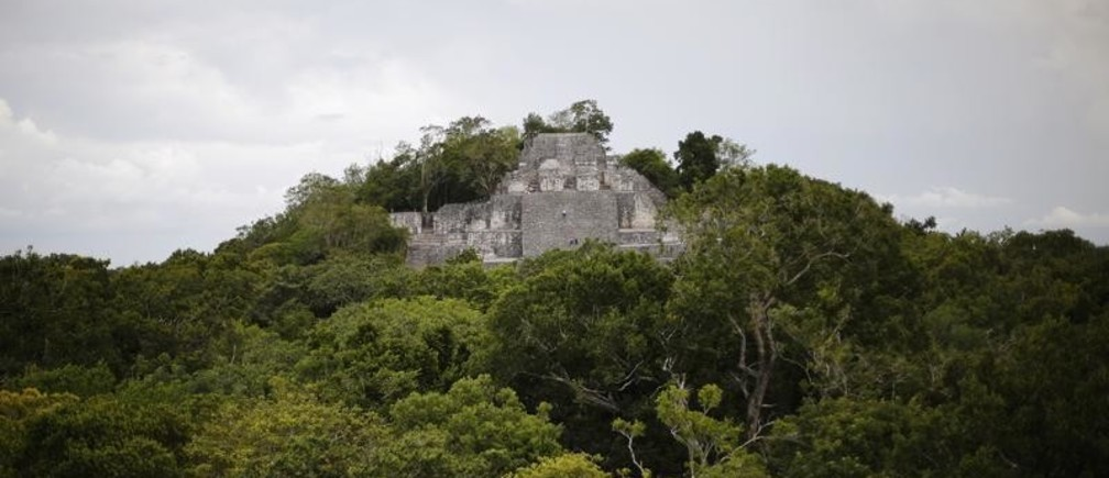 "Part of the Calakmul Estructure II pyramid is seen at the Calakmul Biosphere Reserve in Campeche July 12, 2014. One of the most important cities of Mayan civilization, Calakmul, has been named by UNESCO as Mexico's first ""mixed natural and cultural"" World Heritage Site. The ancient city in Mexico's southern state of Campeche, was once home to more than 50,000 inhabitants and played a key role in the history of this region for more than 12 centuries. The Ancient Maya City of Calakmul was already added to UNESCO's World Heritage Sites list in 2002 but the Protected Tropical Forests of Calakmul have recently been added together with the city to make up the first ""mixed natural and cultural"" site in Mexico. Picture taken July 12, 2014. REUTERS/Bernardo Montoya (MEXICO - Tags: SOCIETY TRAVEL TPX IMAGES OF THE DAY) - GM1EA7F0DW601"