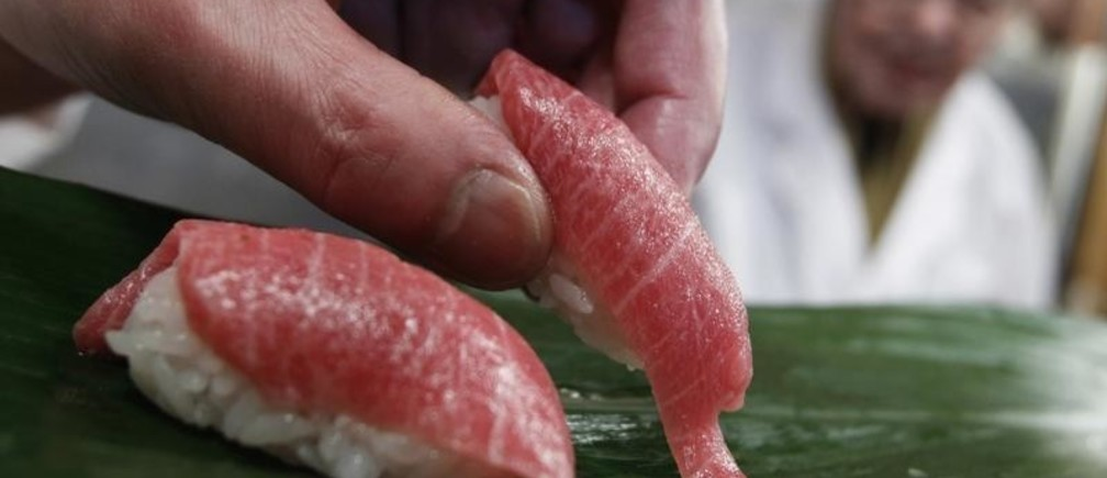 "A sushi chef serves sushi of high-quality fatty Atlantic bluefin tuna or ""o-toro sushi nigiri"" at a sushi restaurant in Tokyo March 18, 2010. The outcome of a drive to ban trade in Atlantic bluefin tuna, prized as a delicacy in Japan, is too close to call before U.N. talks which started last Saturday that will test the world's ability to protect dwindling fish stocks. The 175-nation meeting of the Convention on International Trade in Endangered Species (CITES) in Doha, Qatar, from March 13-25, will vote on about 40 proposals for regulating trade in species including sharks, corals, elephants and polar bears. REUTERS/Issei Kato (JAPAN - Tags: POLITICS ENVIRONMENT IMAGES OF THE DAY FOOD) - GF2E63I0T0O01"