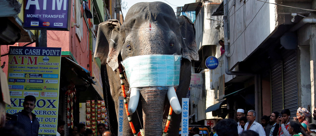 A replica of an elephant with a facemask on is being moved through a street to create awareness against coronavirus disease (COVID-19), in Chennai, India, March 23, 2020. REUTERS/P. Ravikumar - RC2PPF9Z81R4