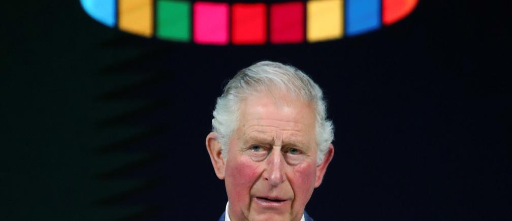 Prince Charles in Davos