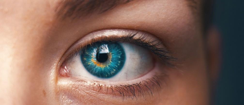 A human eye in closeup.
