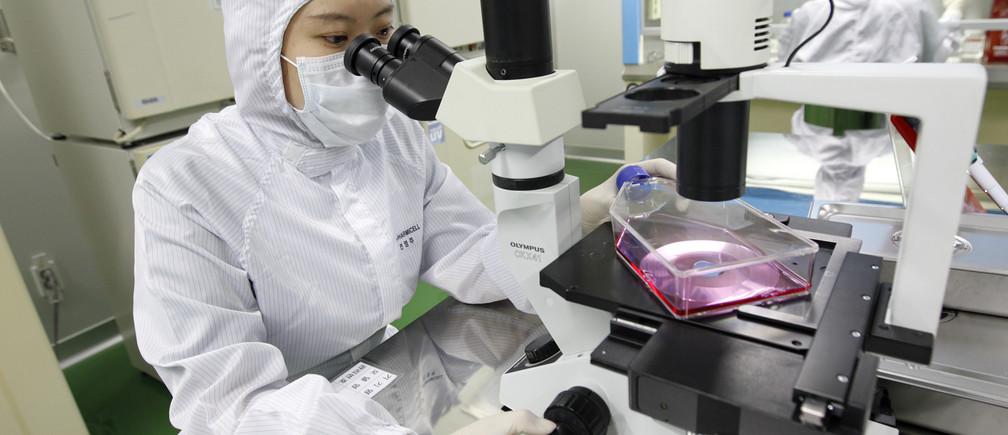 A South Korean stem cell researcher.