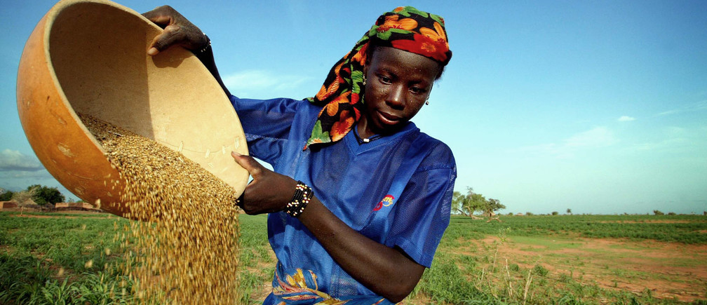 A woman sorts millet at a farming village outside Niger's capital Niamey July 4, 2005. More than 40 percent of Africans live on less than $1 a day, 200 million Africans are threatened by serious food shortages and AIDS kills more than 2 million Africans a year. Aid, debt relief and climate change top the agenda when leaders of the G8 meet for three days from Wednesday in Gleneagles, Scotland. Picture taken July 4, 2005. REUTERS/Finbarr O'Reilly  FOR/mk - RP6DRMTUZRAA