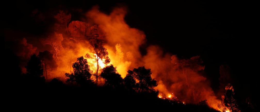 Trees burn during a forest fire near Maials, west of Tarragona, Spain, June 27, 2019. REUTERS/Albert Gea - RC1E29B0C180