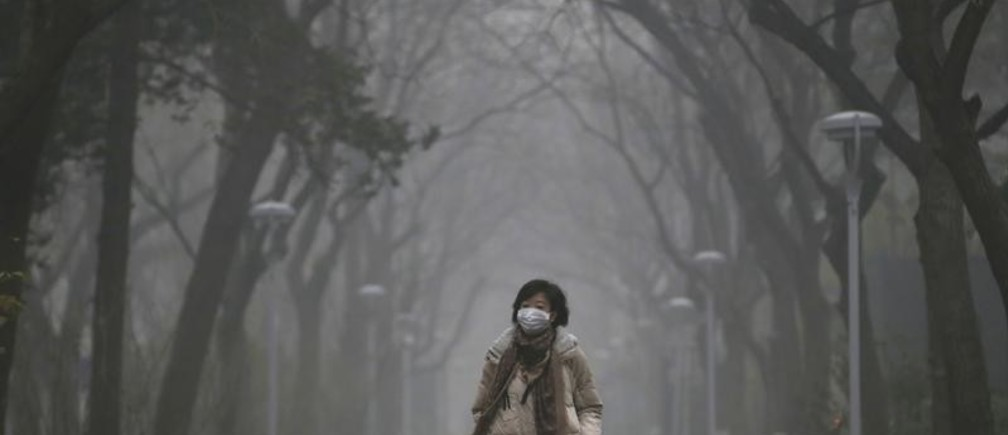A woman wearing a mask walks as smog covers China's capital Beijing on an extremely polluted day, December 1, 2015. REUTERS/Jason Lee - GF20000080343