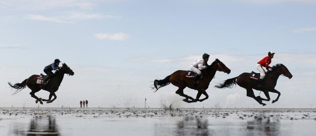 Jockeys race their horses through a puddle during the traditional horse and trotter race meeting in Duhnen on the German North Sea coast near Cuxhaven July 19, 2009. About 30,000 spectators were on hand to watch the annual event that begins as the ebbing tide exposes the mud flats on which the races are run. REUTERS/Christian Charisius (GERMANY SPORT HORSE RACING) - GM1E57J1UGL01