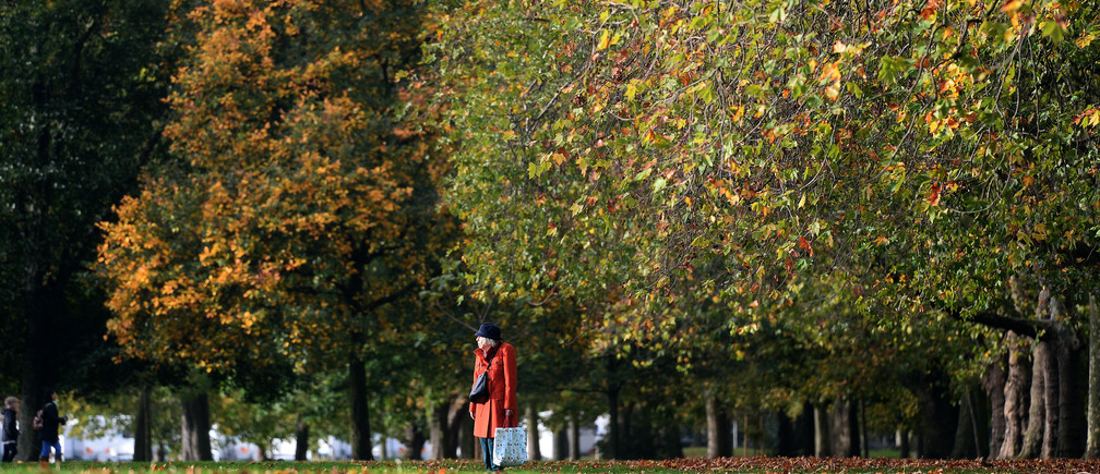 A woman walks past trees displaying autumn colours in Victoria Park, in London, Britain October 21, 2017. REUTERS/Mary Turner - RC18688E8CB0