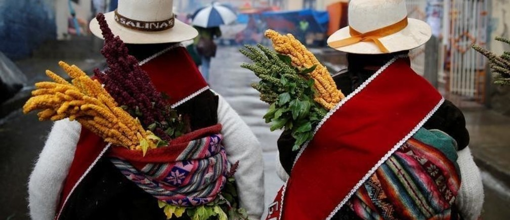 Indigenous women from a community of Oruro province carry quinoa stalks on their backs during the Anata Andina, a thanksgiving festivity ritual to the Pachamama, or mother earth, for their crops and other gifts such as health and prosperity, in the streets of Oruro, Bolivia, February 20, 2020. REUTERS/David Mercado - RC2J4F9QCTV6