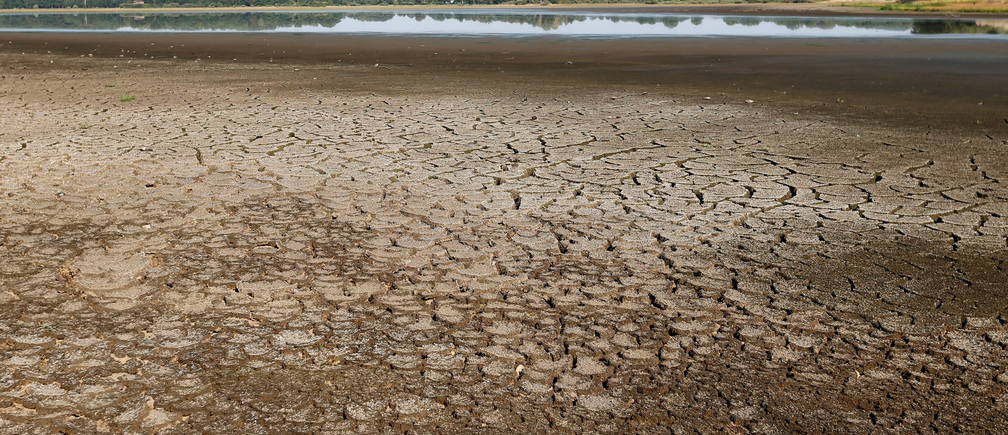 A view shows dried up mud from the Landes pond in Lussat, central France, as the hot weather prolongs drought conditions in France, July 25, 2019. REUTERS/Regis Duvignau - RC13F3A262F0