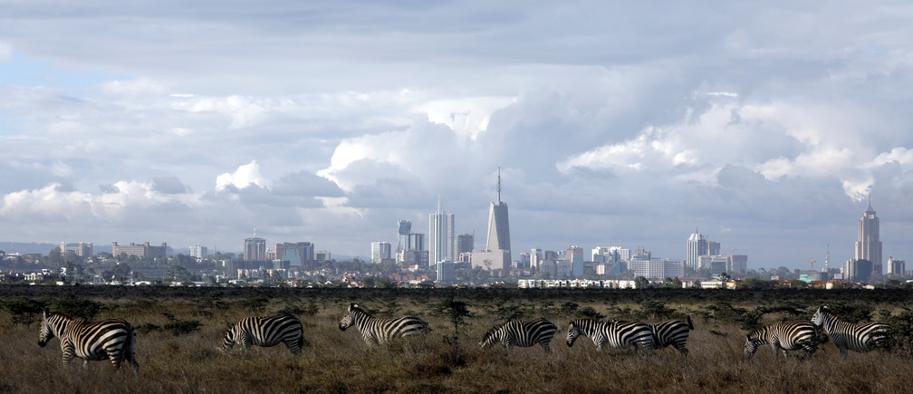 The Nairobi skyline is seen in the background as zebras walk through the Nairobi National Park, near Nairobi, Kenya, December 3, 2018. REUTERS/Amir Cohen - RC188927D7F0