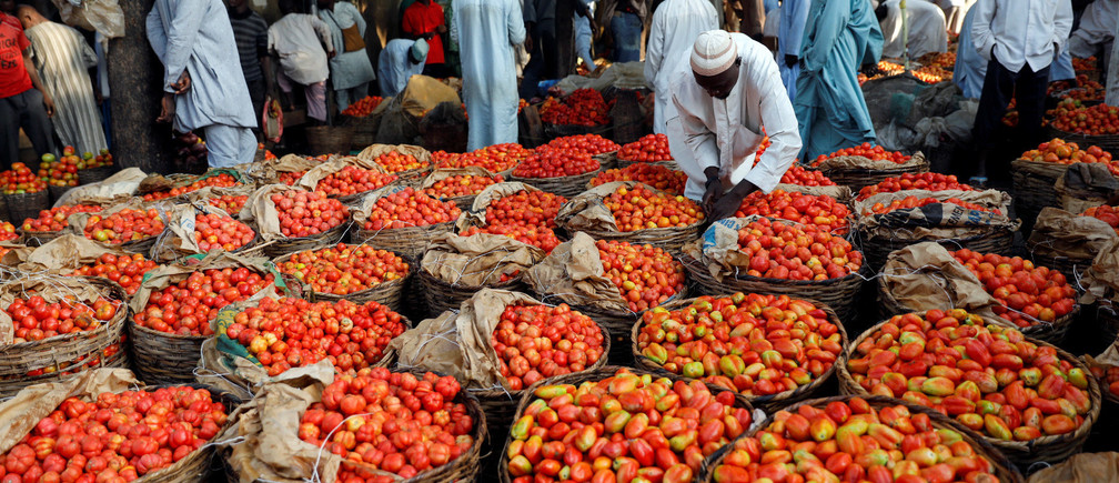 People walk past baskets of tomatoes in the Yankaba market in Kano, northwest Nigeria August 23, 2017. Picture taken August 23, 2017 REUTERS/Akintunde Akinleye - RC1249B0DEB0