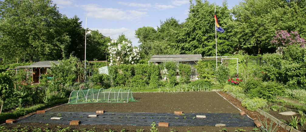 A typical 'Schrebergarten', which means allotment garden, is seen in Dortmund May 22, 2006.  The FIFA soccer World Cup 2006 will be held in Germany from June 9 - July 9.  WORLD CUP 2006 PREVIEW      REUTERS/Ina Fassbender (GERMANY) - BM2DSRGSHEAA