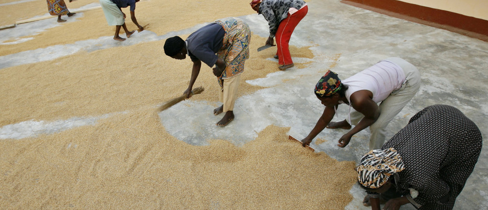 Women from a single mothers association sweep rice at their processing plant in the northern Ghanaian town of Bolgatanga.