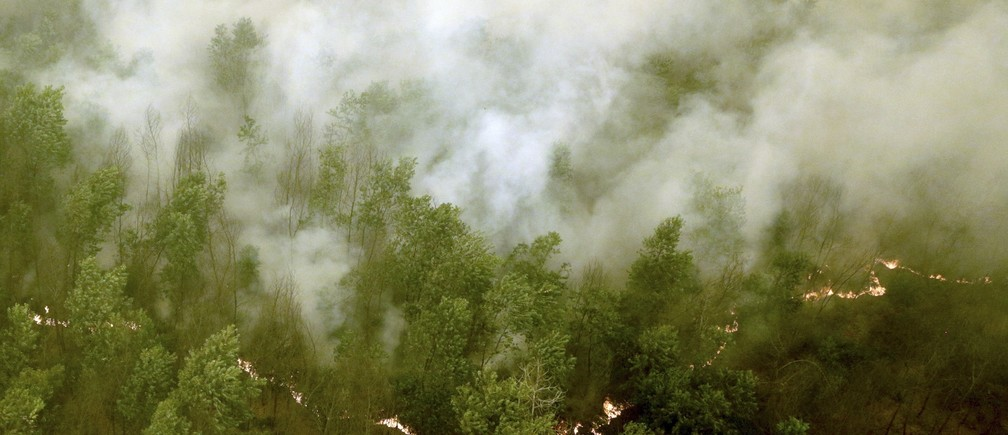 Thick smoke rises as a fire burns in a forest at Ogan Komering Ilir Regency, Indonesia's South Sumatra province October 20, 2015 in this picture taken by Antara Foto.