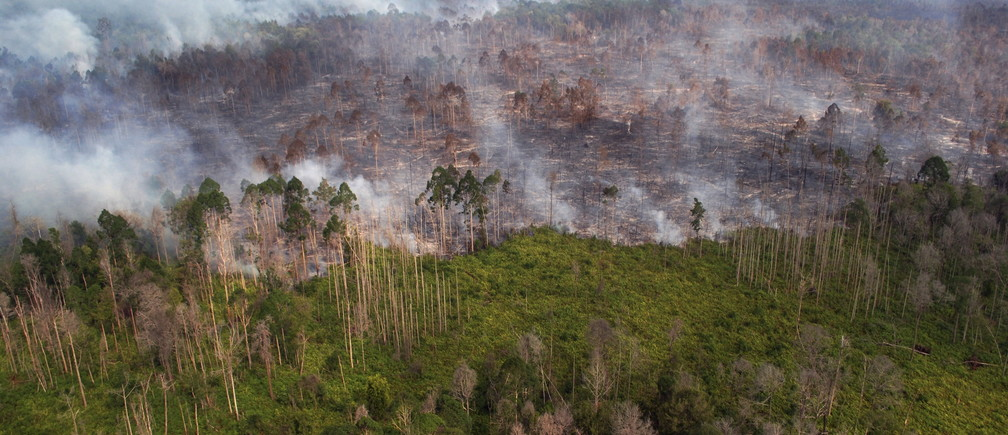 An aerial view of a forest fire burning near the village of Bokor, Meranti Islands regency, Riau province, Indonesia March 15, 2016 in this photo taken by Antara Foto.