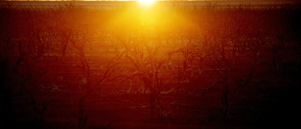 "The sun rises over dried up lake Pamamaroo, outside of Menindee, Australia, September 2, 2019. Prolonged drought exacerbated by demands on water resources by irrigators and cities means the Darling River (Barka) is running dry. The towns of Menindee and Wilcannia avoid drinking tap water, relying instead on charity donations of 10-litre boxes of water and rain tank water for potable uses. REUTERS/Tracey Nearmy   SEARCH ""NEARMY DROUGHT"" FOR THIS STORY. SEARCH ""WIDER IMAGE"" FOR ALL STORIES. - RC15015FCE30"