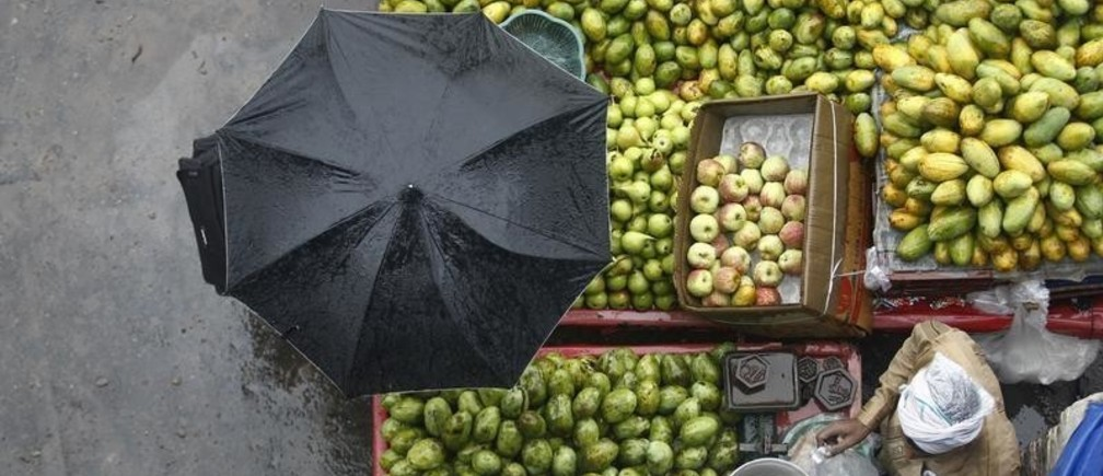 A vendor sells fruits during a heavy monsoon rain shower in New Delhi July 20, 2013. India's monsoon rains turned average last week and may pick up over areas that grow cane, oilseed and cotton in northern and western regions next week, weather department officials said, helping most summer crops into their last leg of planting. REUTERS/Anindito Mukherjee (INDIA - Tags: ENVIRONMENT SOCIETY FOOD TPX IMAGES OF THE DAY) - GM1E97K1SM701