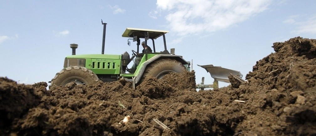 A farmer operates a tractor while tilling soil to grow potatoes in Reghaia area, east of Algiers April 23, 2013. The farmers earn on average $12 a day. Picture taken April 23, 2013. REUTERS/Louafi Larbi (ALGERIA - Tags: AGRICULTURE BUSINESS EMPLOYMENT) - RTXZ8