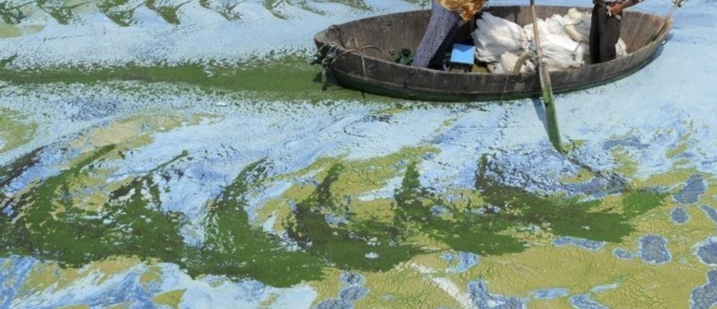 Fishermen row a boat in the algae-filled Chaohu Lake in Hefei, Anhui province, June 19, 2009. The country has invested 51 billion yuan ($7.4 billion) towards the construction of 2,712 projects for the treatment of eight rivers and lakes including Huaihe River, Haihe River, Liaohe River, Chaohu Lake, Dianchi Lake, Songhua River, the Three Gorges region of the Yangtze River and its upstream area, Xinhua News Agency reported. REUTERS/Jianan Yu (CHINA ENVIRONMENT SOCIETY BUSINESS IMAGES OF THE DAY)  FOR BEST QUALITY IMAGE ALSO SEE: GM1E57T19EY01 - GM1E56J1D3F01