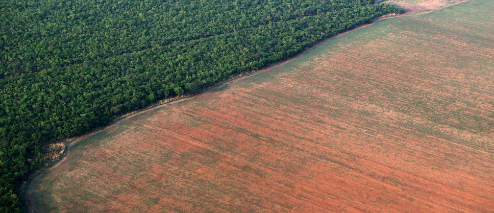 The Amazon rain forest bordered by deforested land prepared for the planting of soybeans