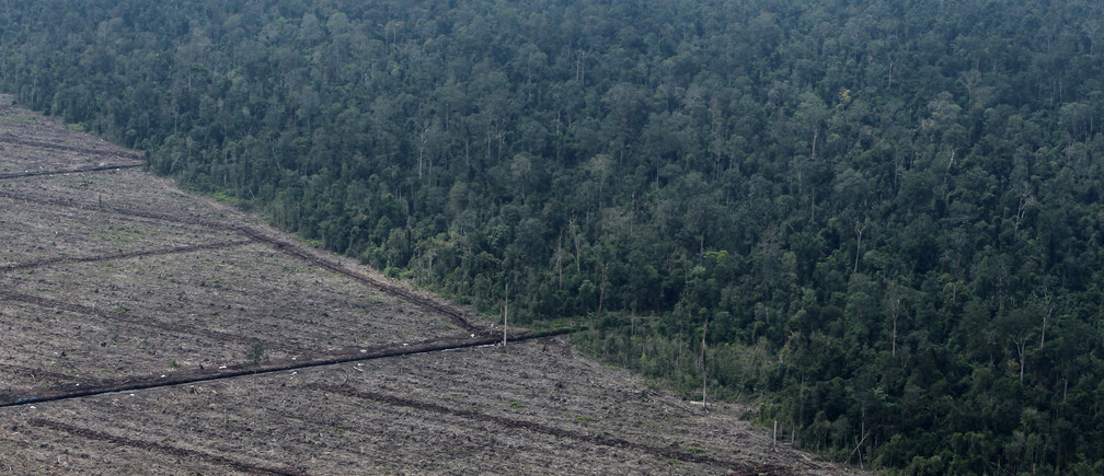 Deforestation on Indonesia's Sumatra island. Land use is the only sector that can go from a net emitter to a net absorber in future.