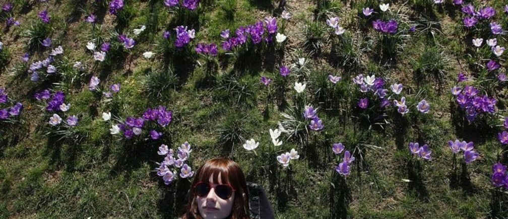 A tourist lies on the grass, surrounded by spring flowers in a park in central London March 16, 2010.    REUTERS/Stefan Wermuth    (BRITAIN - Tags: ENVIRONMENT) - LM1E63G15D601