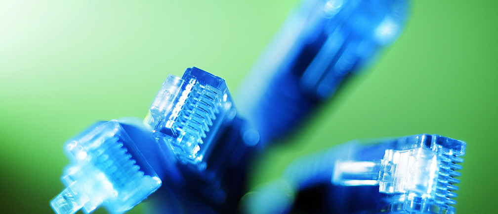 Internet LAN cables are pictured in this photo illustration taken in Sydney June 23, 2011