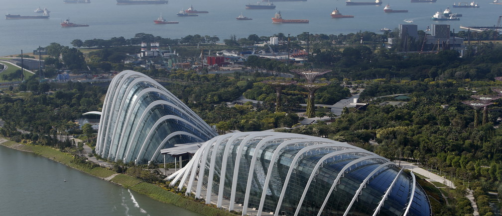 Vessels anchor along the southern coast next to the Flower Dome and Cloud Forest conservatories at the Gardens by the Bay in Singapore July 16, 2015. Singapore marks 50 years of independence in a series of Golden Jubilee celebrations on Sunday. Picture taken July 16, 2015.  REUTERS/Edgar Su  - GF20000016392