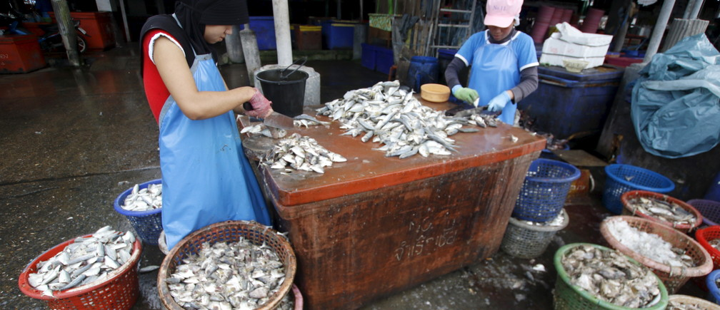 Migrant workers cut fish during a police inspection at the pier of Songkhla, south Thailand December 2015. Thailand's seafood industry was hit by reports of trafficked labour.