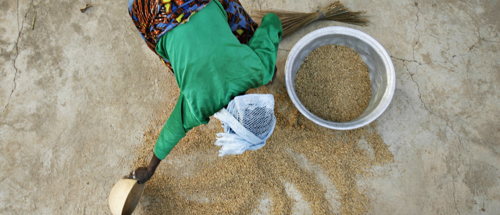 A woman from the Daborin Single Mothers Association gathers rice at a small processing plant in the northern Ghanaian town of Bolgatanga, February 1, 2008. The single mothers began their organisation to gain more freedom and financial independence in a district where most farmers live on the equivalent of about a dollar a day, according to Oxfam, which helps fund the women's programme. REUTERS/Finbarr O'Reilly (GHANA) - GM1DXEDNSHAA