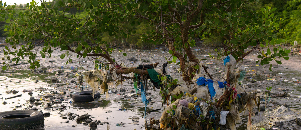 Plastic trash, including sachets of various products, are stuck between mangroves in Freedom Island, Paranaque City, Metro Manila, Philippines August 20, 2019. Picture taken August 20, 2019