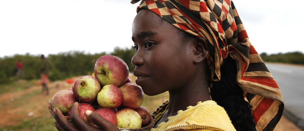 A girl selling apples by the roadside waits for customers just outside the Angolan city of Lubango, January 15, 2010. Lubango is hosting the African Cup of Nations Group D soccer matches.  REUTERS/Finbarr O'Reilly (ANGOLA - Tags: SOCIETY IMAGES OF THE DAY) - RTR28WUB