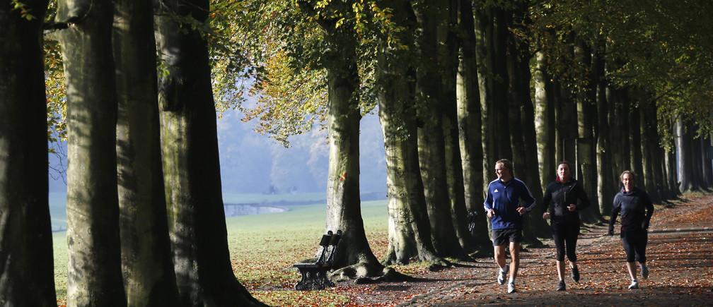 Joggers make their way through a park during autumn in Tervuren, near Brussels October 30, 2012.        REUTERS/Francois Lenoir (BELGIUM - Tags: ENVIRONMENT SPORT) - GM1E8AU1JTU01