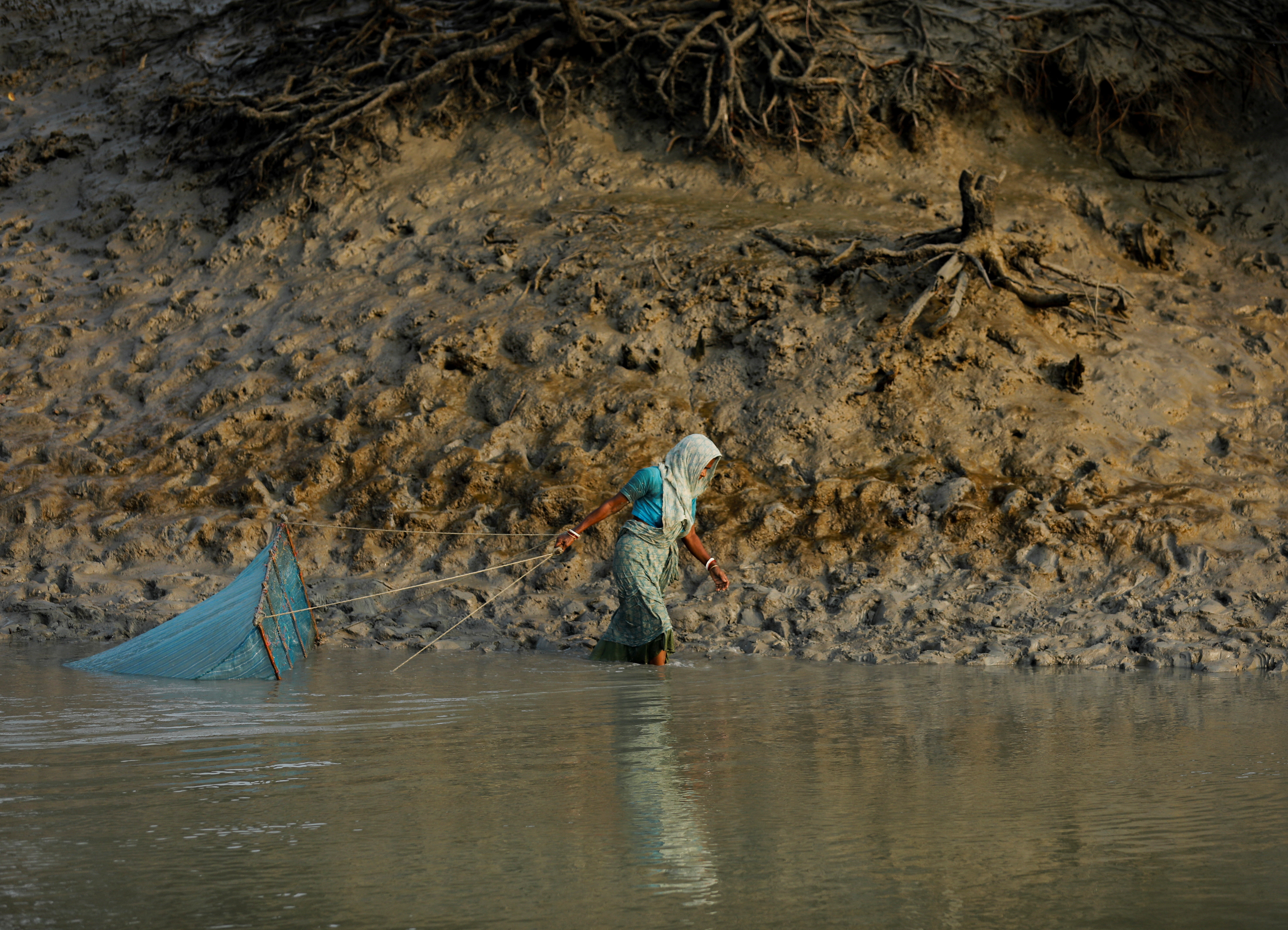 """A woman fishes along the banks of a river near the island of Satjelia in the Sundarbans, India, December 16, 2019. REUTERS/Anushree Fadnavis     SEARCH """"FADNAVIS SUNDARBANS"""" FOR THIS STORY. SEARCH """"WIDER IMAGE"""" FOR ALL STORIES. - RC2B7L9W7O1O"""