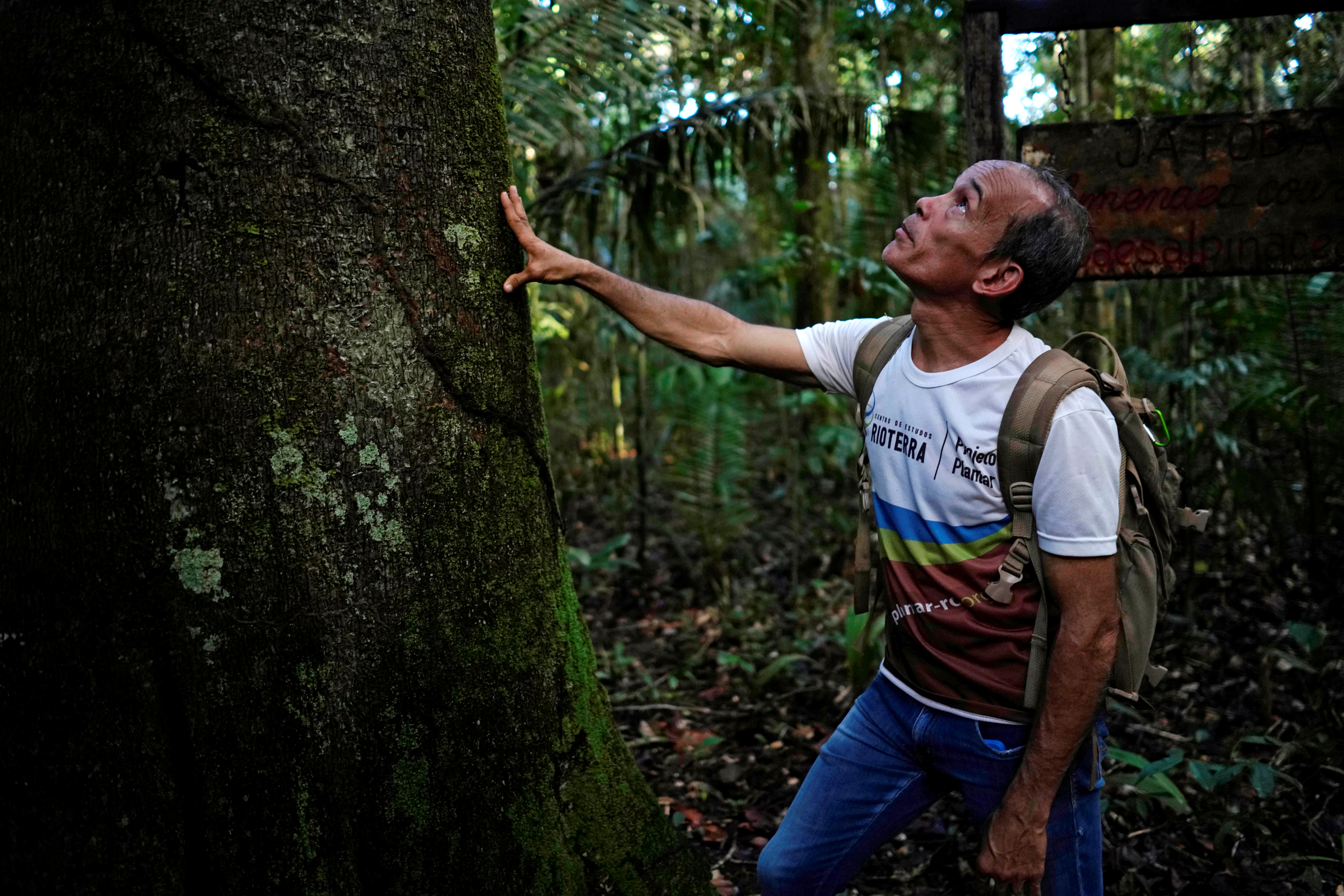 Environmentalist Dejesus Aparecido checks a tree at the National Forest of Jamari in Itapua do Oeste, Brazil, February 17, 2020. Picture taken on February 17, 2020. REUTERS/Alexandre Meneghini - RC2N9G90M87Y
