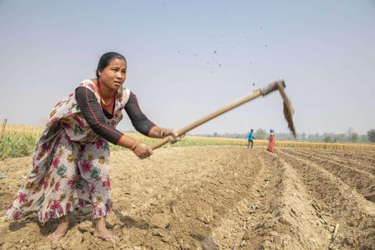 Woman works in field.