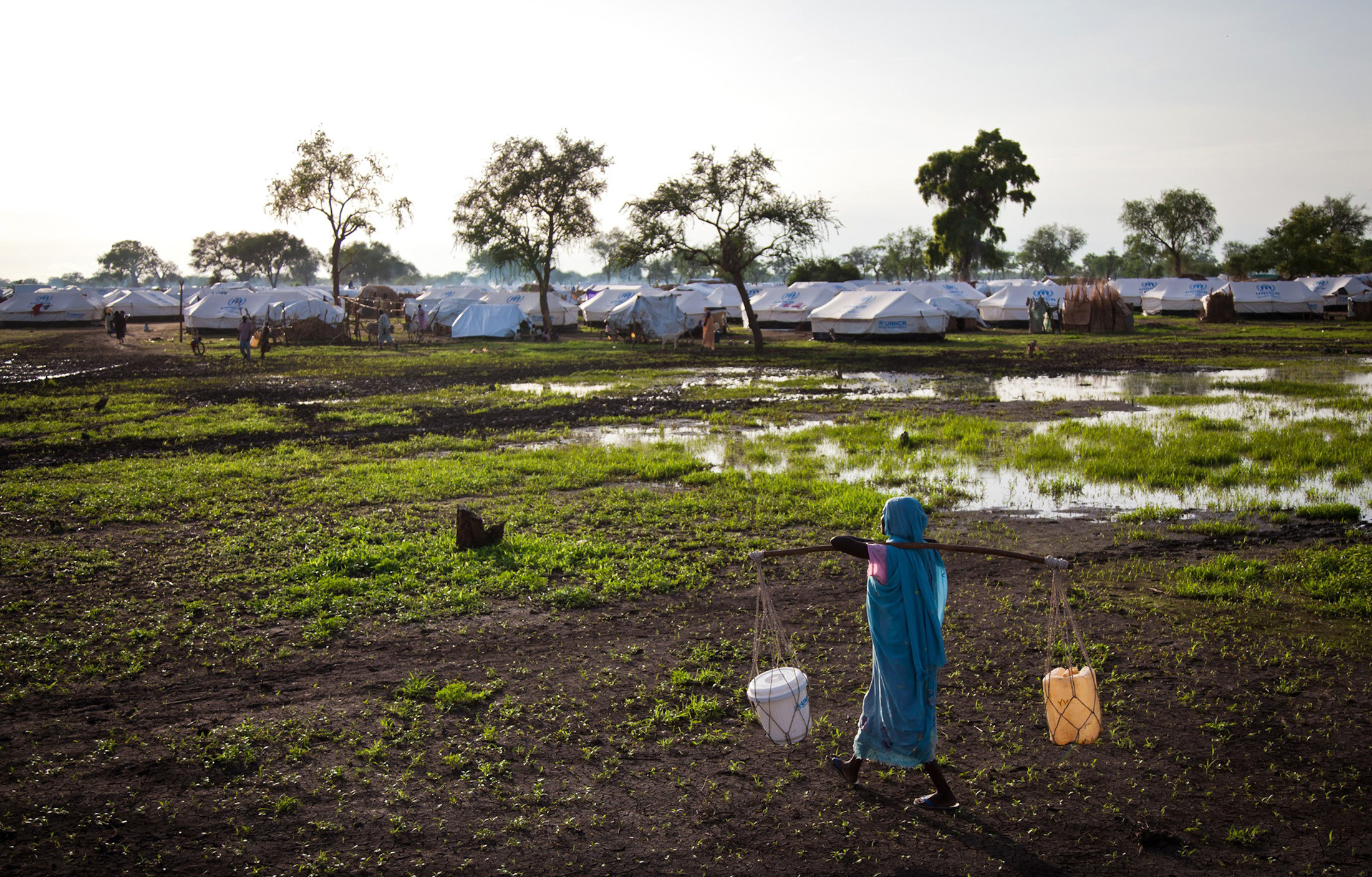 A woman carries water through a flooded field