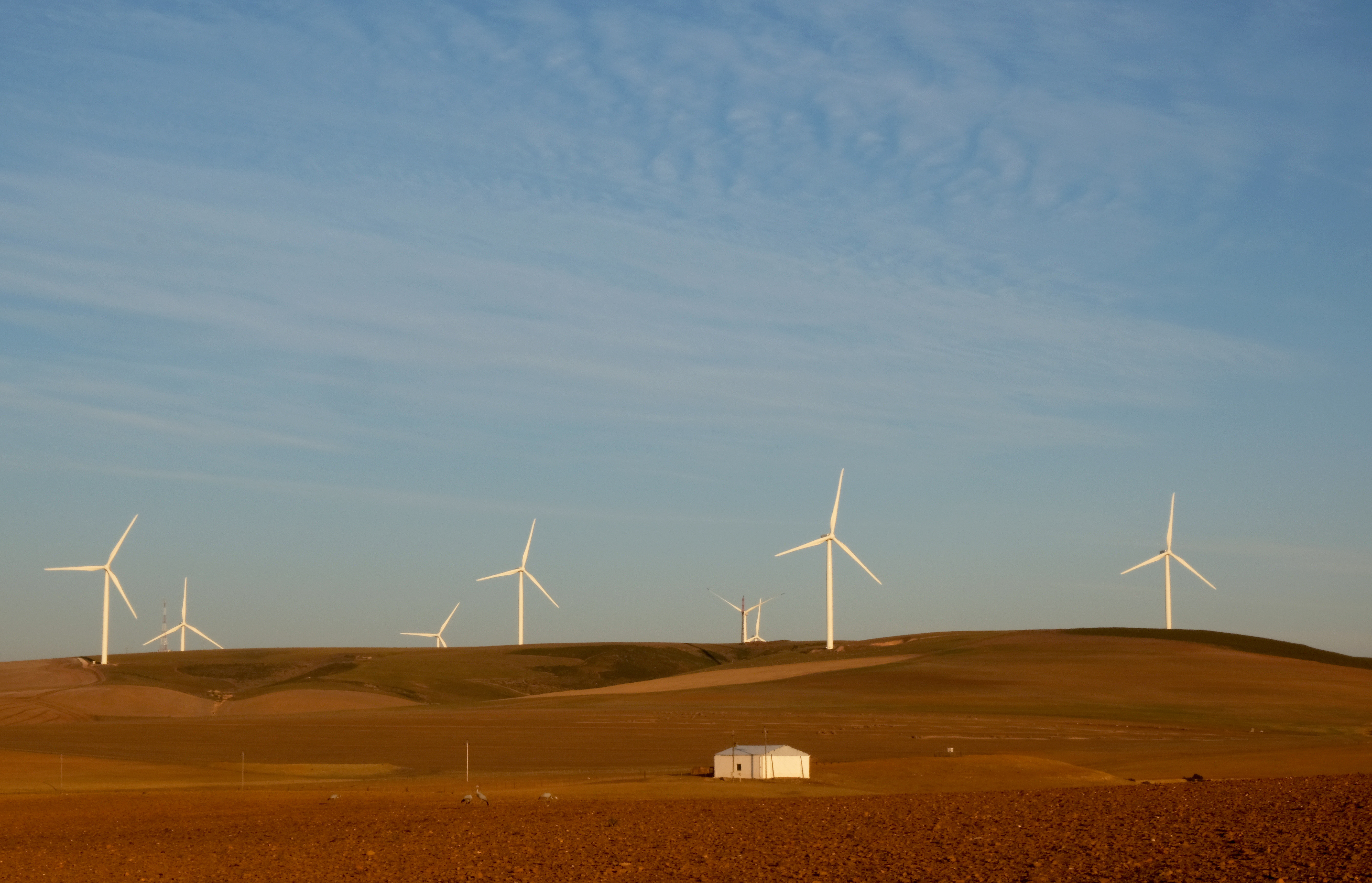 Wind turbines produce renewable energy outside Caledon, South Africa, May 20, 2020. Picture taken May 20, 2020. REUTERS/Mike Hutchings - RC272H96YWGL