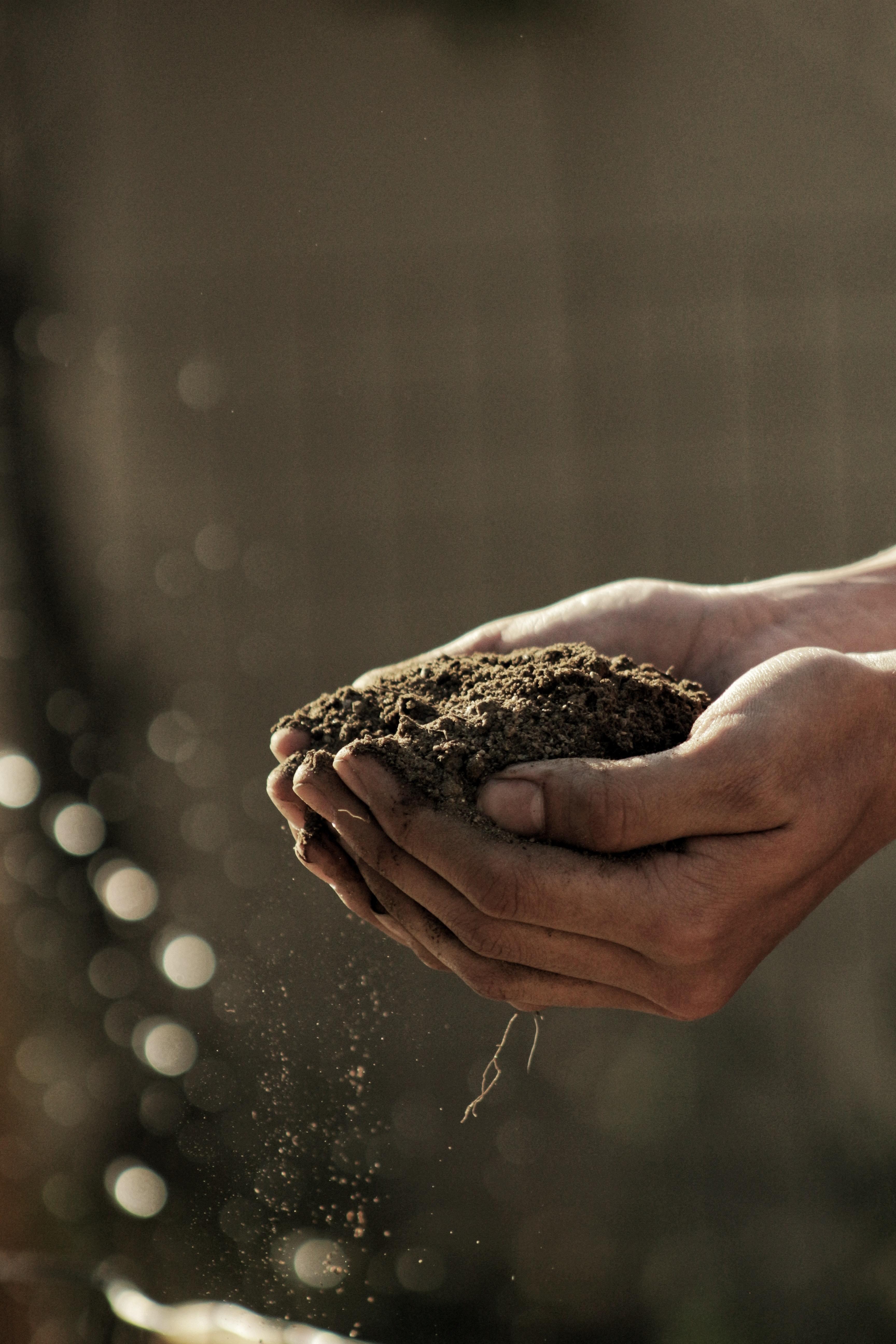 Un chemin Net Zero, Nature Positive est la seule option pour notre survie économique et planétaire.