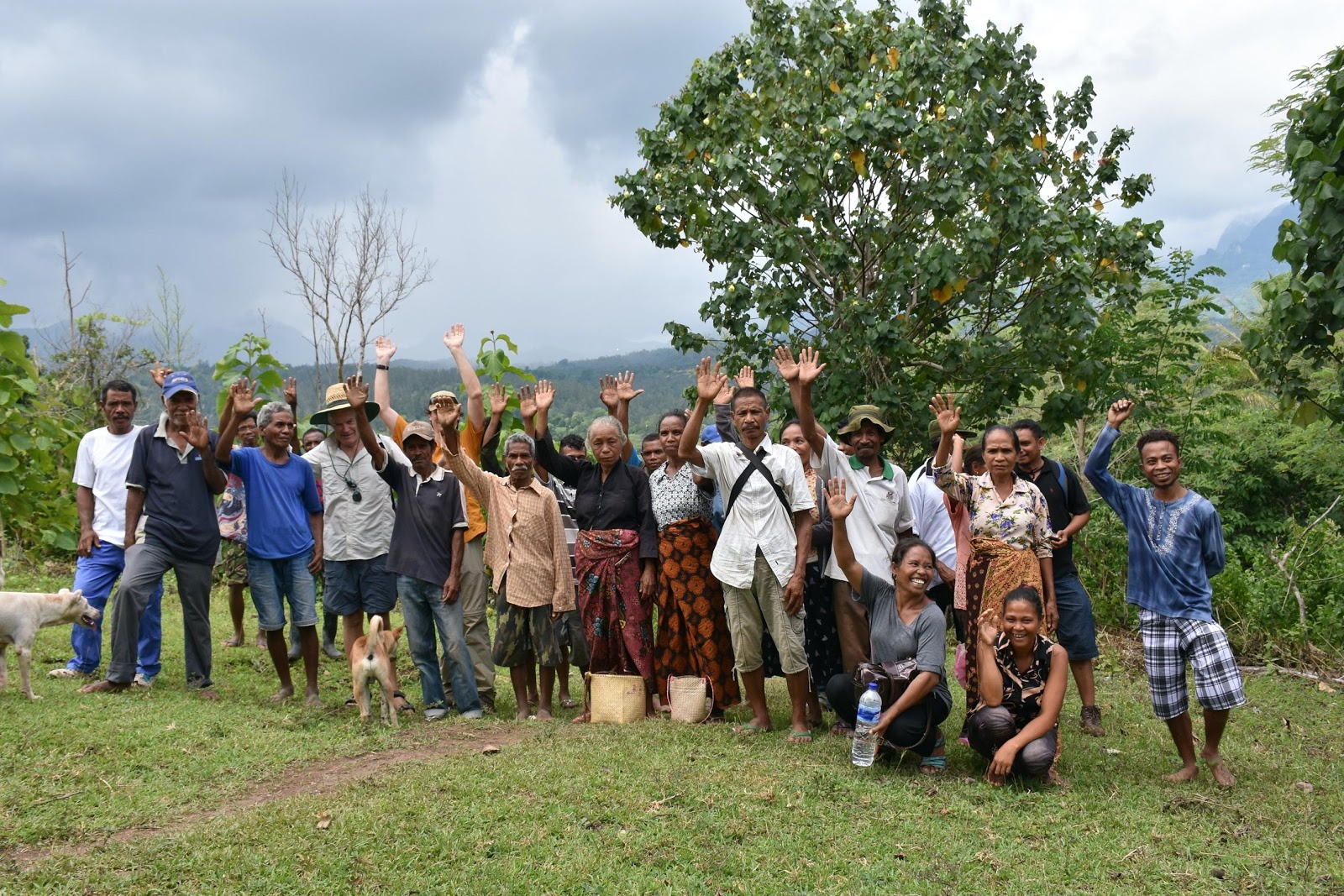 WithOneSeed farmers in Timor-Leste pose as a group