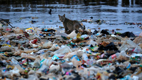 Here S How Indonesia Plans To Tackle Its Plastic Pollution Problem