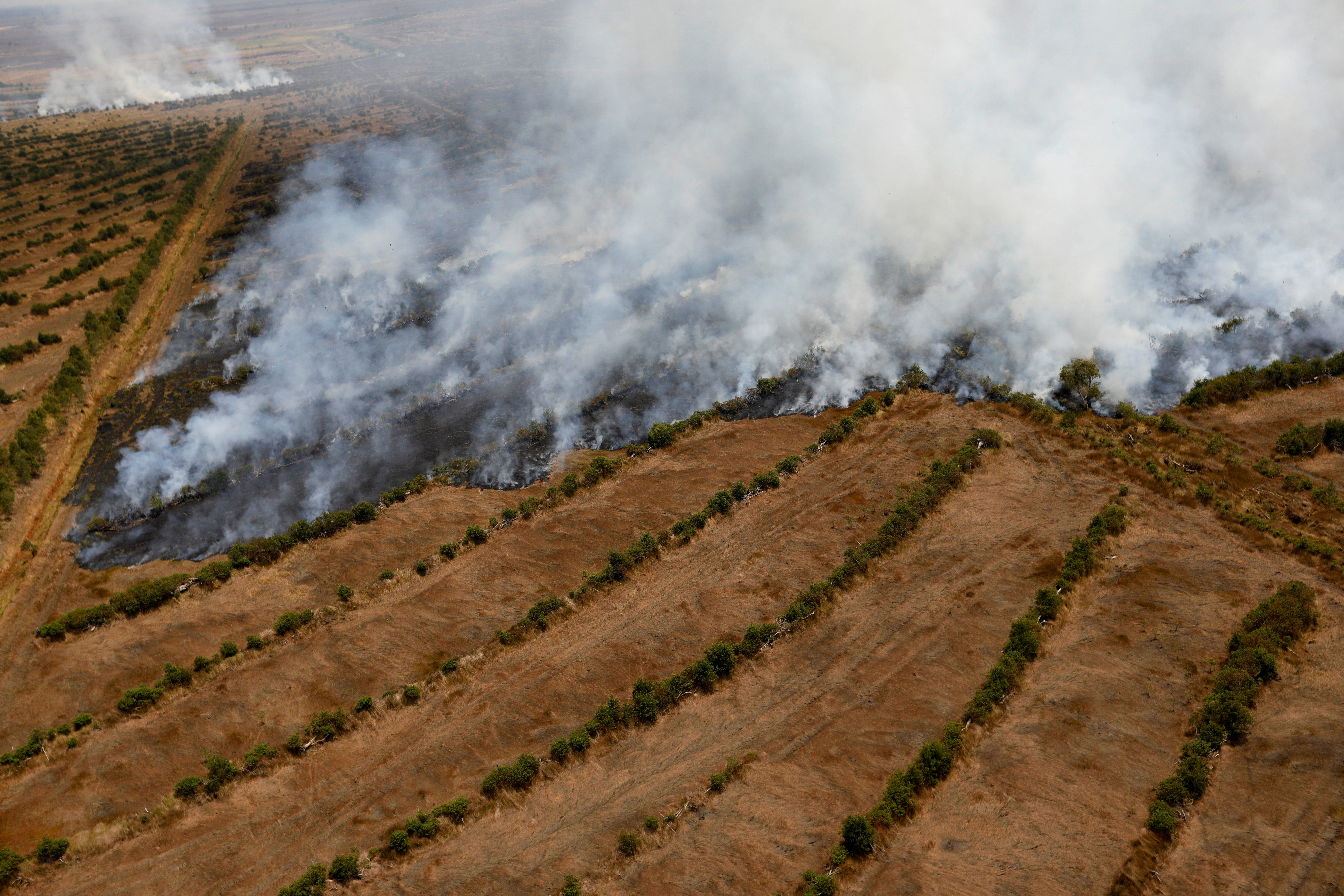 Smoke rises from a peatland during fires near Banjarmasin in South Kalimantan province, Indonesia, September 29, 2019. REUTERS/Willy Kurniawan REFILE - CORRECTING NAME OF THE PROVINCE - RC1380B8E5E0