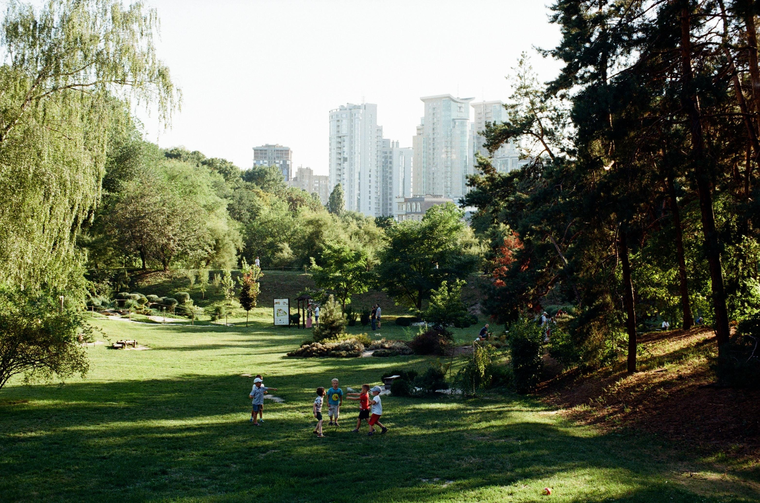 City park Urban forests cities environment air pollution mental health