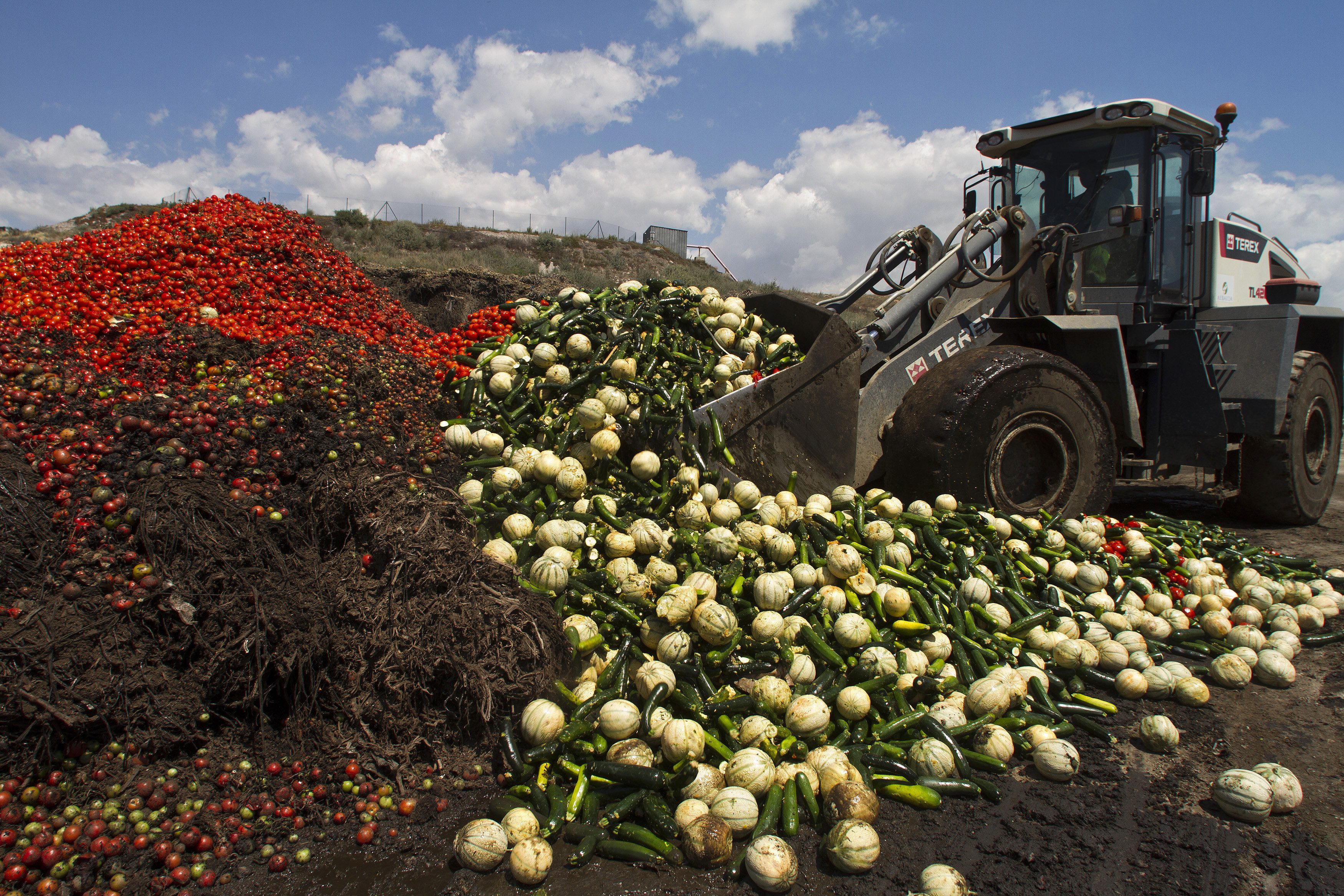 """A digger unloads discarded vegetables into a pile of vegetable residue at the Albahida vegetable recycling plant in Nijar, in the southern Spanish region of Almeria, June 8, 2011. On Tuesday the European Union offered farmers 150 million euros in aid to reimburse producers who have been unable to sell fruit and salad vegetables for nearly two weeks after being erroneously blamed for an E.coli outbreak in Germany"""". They want to fob us off with 150 million (euros). It's shameful, it's humiliating when losses in our country are above 350 million,"""" Miguel Lopez, general secretary of the COAG farmers' union told reporters.REUTERS/Francisco Bonilla (SPAIN - Tags: HEALTH AGRICULTURE BUSINESS IMAGES OF THE DAY) - GM1E769000M02"""